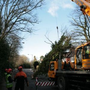 Crane Removal And Road Closure